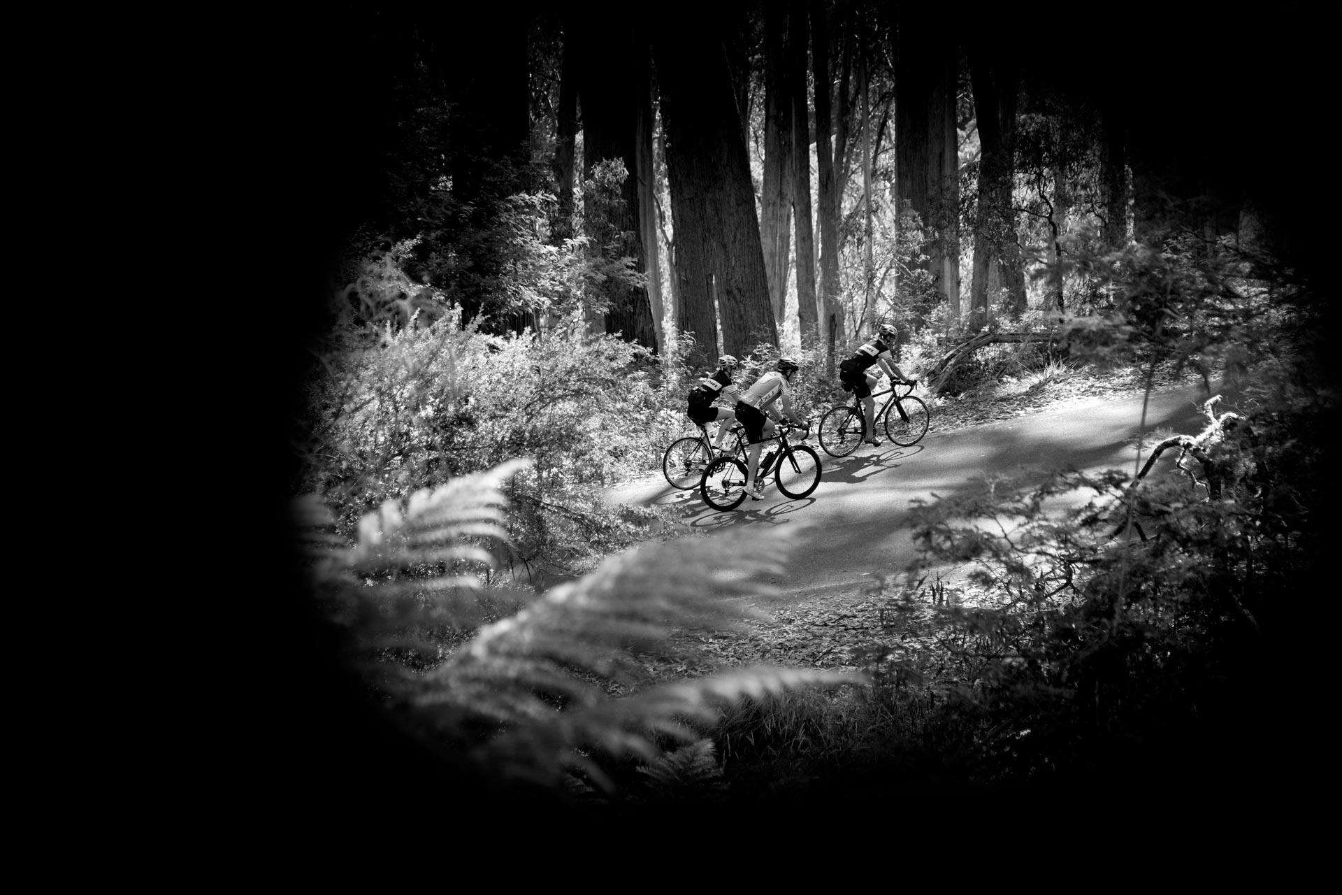 2015 Mitchelton Bay Cycling Classic
